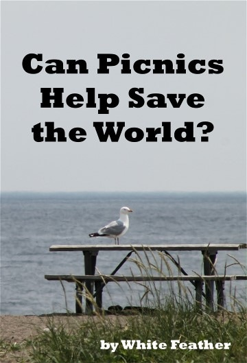 Can Picnics Help Save the World?